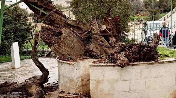 Три признака апокалипсиса в Израиле - иудейские и православные